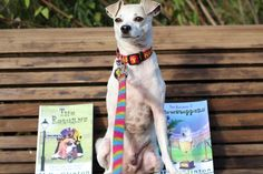 Holiday Reading for Dog Lovers - The Returns Series!