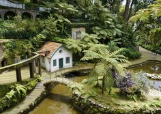 PRETTY. A trip to Funchal Portugal, Weekend Deals, Funchal, Travel Guide, Cabin, Island, House Styles, Pretty, Home Decor