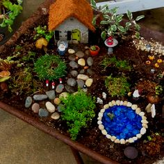 Gnome garden - going to make one of these. I have my house started.  So many ideas!