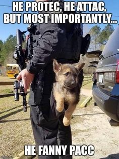 Things we love about the loyal German Shepherd Puppies Cute Funny Animals, Cute Baby Animals, Funny Dogs, Cute Dogs, Fun Funny, War Dogs, Military Dogs, Police Dogs, Military Working Dogs