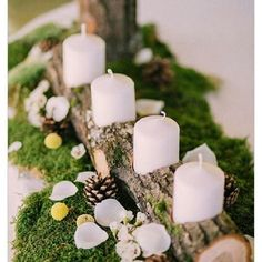 wedding winter wedding decorations candlestick from a wooden branch with white candles surrounded by pine cones on a green moss muse books via Christmas Wedding Centerpieces, Winter Wedding Decorations, Rustic Centerpieces, Christmas Decorations, Table Decorations, Centerpiece Ideas, Moss Wedding Decor, Moss Decor, Winter Centerpieces