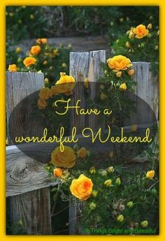 Live Love and Laugh😊 Happy Weekend Quotes, Its Friday Quotes, Happy Monday, Weekend Greetings, Blessed Friday, Weekday Quotes, Have A Happy Day, Good Morning Coffee, Morning Blessings