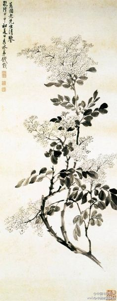 This painting captured white lilac flowers to hook dye ink drawing its bloom like heaps of snow scene. Written in ink sticks to light, blending into the leaves. Inflorescence with simple pen sketch freehand, namely Zongyi joy and God Qing Yun foot. Leaves the pitch toward the back, are a different pen, sophistication and vivid. Picture fresh and elegant, beautiful and natural. Shanghai Museum.