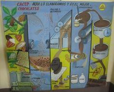 Process de transformation du cacao