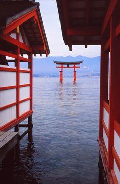 Itsukushima Shrine, Miyajima, Japan ~ I MUST go here every time I am in Japan. It's beautiful and peaceful. Added bonus: down the road are the Momijimanjyu shops!