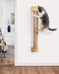 Cat Climbing Shelves, Cat Climbing Wall, Floating Cat Shelves, Cat Wall Shelves, Cat Scratching Tree, Diy Cat Scratching Post, Cat Wall Furniture, Cat House Diy, Cat Exercise
