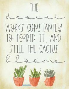 20 Best Cactus quotes images