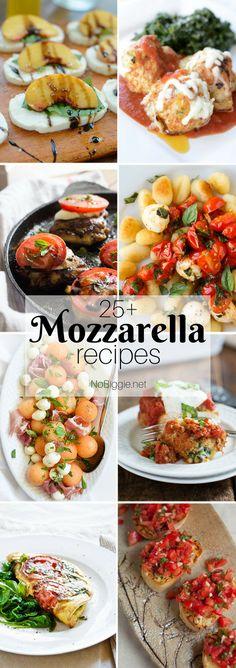 25+ Mozzarella Recip