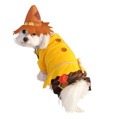 Scarecrow Dog Costume now featured on Fab.com $21