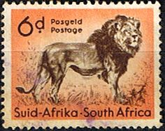 South Africa 1954 Wild Animals SG 158 Lion Fine Used SG 158 Scott 207 Condition Fine Used Only one post charge applied on multipule purchases Details African Animals, African Safari, Wild Animals List, Small Wild Cats, Big Cats, Union Of South Africa, Art Postal, Sell Stamps, Stamp Printing
