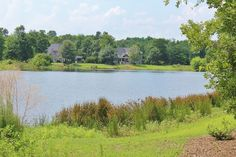 Do you want to build your dream home in Coastal Georgia? Well 502 Chastain is the perfect lot for that! Contact the Randy Bocook Team for additional information! 912-572-4663