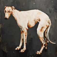 Greyhound, by Constance Bachmann