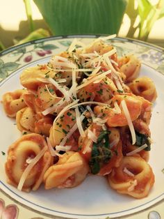 Three Cheese Tortellini with Traditional Suace and Parmigiano Cheese