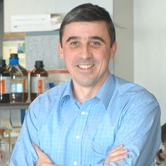 Peter Carmeliet, expert in vasculogenesis, angiogenesis, and vascular endothelial growth factor (VEGF).