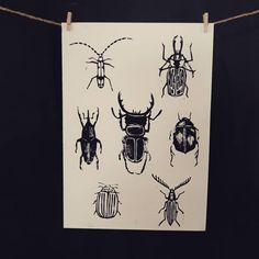 Poster #brouci #tisk #linoryt #linoprint #linocut #printoftheday #madeitmyself #artprint #craftymomma #handmade #craftsofinstagram… Linoprint, My Arts, Crafty, Art Prints, Handmade, Poster, Character, Instagram, Art Impressions