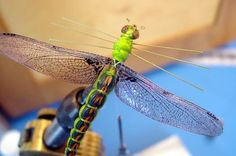 Tying a Dragonfly Fly Tying, How to tie fly, Fly tying Step by Step Patterns & Tutorials