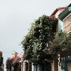 WHERE THE STREETS HAVE NAMES #Cartagena #pastel #lovelyplace