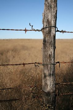 Barbed wire fence I'd love to draw this