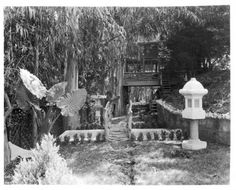 View of a landscaped yard, Los Angeles, ca. 1920 :: California Historical Society Collection, 1860-1960