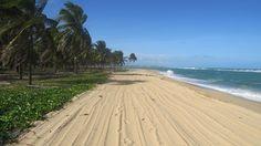 Praia do Gunga - Maceió - Brazil