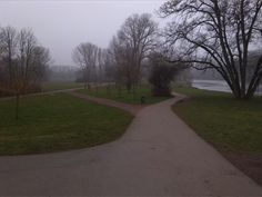 Halle (Saale), den 11.03.2016: Mein morgendlicher Weg zur Arbeit über die Ziegelwiese am Fluss Saale.