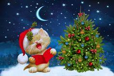 merry-christmas-tree-kitten-santa-snow-winter.jpg (4500×3000)