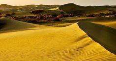 """Maowusu desert, Inner Mongolia, China,"" by Han Xiaopeng, via Flickr"