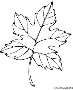 Fine Coloriage Feuille Automne that you must know, Youre in good company if you?re looking for Coloriage Feuille Automne Leaf Coloring Page, Coloring Book Pages, Coloring Pages For Kids, Coloring Sheets, Colouring, Leaf Template, Flower Template, Templates, Embroidery Leaf