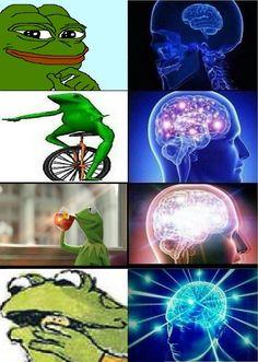 Evolution of Amphibian | Expanding Brain | Know Your Meme