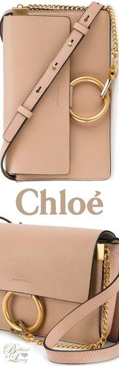 Brilliant Luxury by Emmy DE ♦ Chloé 'Small Faye' Shoulder Bag