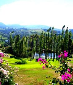 Paisajes de Sanare, es una importante localidad  del estado Lara. Venezuela