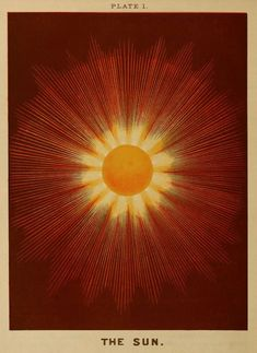 advent 4 The Sun , Plate 1 from 'Electro astronomical atlas . with explanatory notes, questions and answers' by Joseph W Spoor, 1874 Miguel Diaz, Orange Aesthetic, Sun Aesthetic, Sun Art, Summer Solstice, Tentacle, Wall Collage, Artsy, Graphic Design