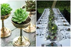 The Trend: Cactus Centerpieces | If I Were A Painter