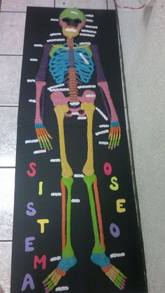 sistema oseo equipo 19 y 20 Biology Projects, Science Fair Projects, School Projects, Projects For Kids, Diy For Kids, Skeleton For Kids, 3d Skeleton, Skeleton Model, Skeleton System