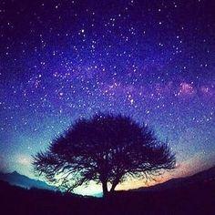 Horoskop incontri Ho bisogno di una pausa dalla datazione