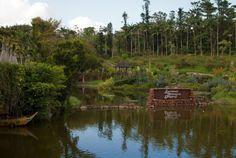 ✔️Southeast Botanical Gardens l Okinawa Hai!