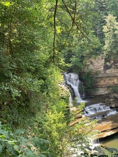 Get our and explore the beautiful state of Tennessee all while social distancing! Click the image to read more. #socialdistancing #greatoutdoors #waterfall #hiking #kayaking #tennessee #explore #collectiondesignlifestyle State Of Tennessee, Summer Bucket Lists, Kayaking, Waterfall, Hiking, Explore, Outdoor, Image, Beautiful
