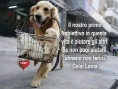 Our first objective in life is to help others, if you can't help them, at least don't hurt them