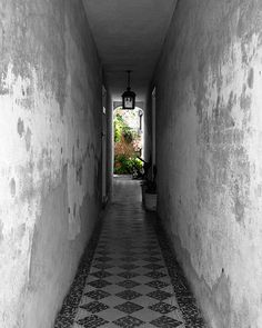 Path to Enlightenment, Charleston SC - Matted Print, Fine Art Photography