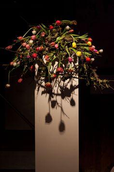 Moods by Sarah   Wie bloemen als kunst ziet, kent de onbeperkte mogelijkheden