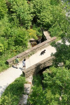 Phipps Run Trail at Schenley Park by Melissa @ PPC, via Flickr
