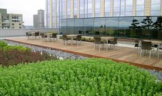 Washington Mutual Center Roof Garden