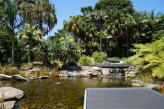 Playground at mt annan botanic gardens