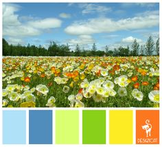 Spring Field: Blue, Pastel, Sky, Green, Leaf, Yellow, Orange - Colour Inspiration pallet