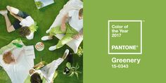 Pantone's 2017 Color of the Year is a 'bright and powerful' green