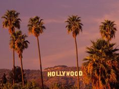 Hollywood sign and palm trees, Hollywood, Los Angeles, California California Dreamin', Hollywood California, Tarzana California, Aesthetic Vintage, Aesthetic Photo, Orange Aesthetic, Usa Tumblr, Photo Wall Collage, Picture Wall