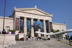 Aquariumi Chicago - Illinois - USA #Chicago #Illinois #USA #photography #city #Polacy_w_USA #Polonia #wietrzne #miasto #windy #city