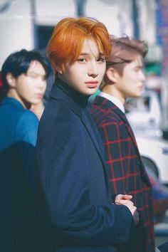 """""""Jungwoo ahh, gue capek gue duduk aja ya?."""" """"Gagagaga, ntar calbin … #fiksipenggemar # Fiksi Penggemar # amreading # books # wattpad Winwin, Taeyong, Nct 127, Jaehyun, Nct Dream, Kpop, Nct Debut, Rapper, Kim Jung Woo"""