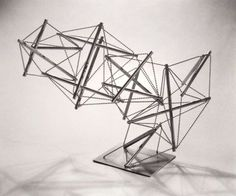 "Kenneth Snelson ""Harry's Hen"" 1960"