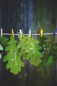 Oak leaf escort cards ~ eco-friendly and this works with a purple & green color scheme